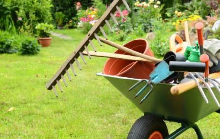 Les engrais naturels se révèlent à la fois fertilisants, nutritifs et c'est une méthode propice pour la protection de l'environnement. Pour éviter l'usage des engrais chimiques et favoriser l'utilisation des engrais naturels, nous allons vous faire connaitre ci-dessous les manières d'obtenir facilement des engrais naturels.